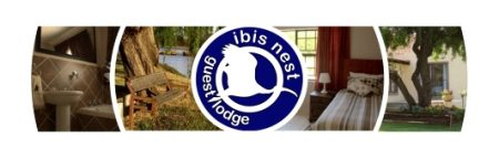 Ibis Nest